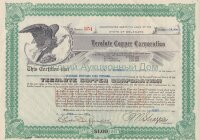 Tecolote Copper  Mines Corporation. Delaware. Second Preferred Shares. 1921 Rare! Issued to B.D.Woodward