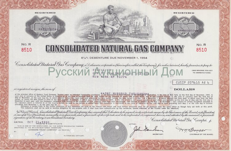 Consolidated Natural Gas Company. Delaware. 8 1/4% debenture.1980's (brown)