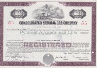 Consolidated Natural Gas Company. Delaware. 8 1/4% debenture.1960's (purple) 1000$